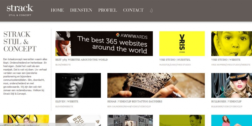 Wordpress Powered Website_Portfolio Website